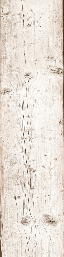 5008166 - PÁTINA